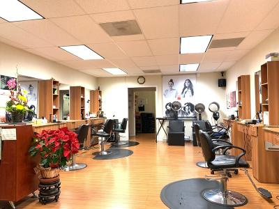 CUPERTINO CA Business Opportunity For Sale: $90,000