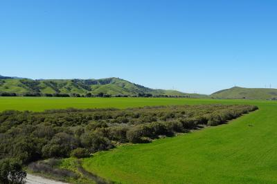 MORGAN HILL CA Residential Lots & Land For Sale: $749,000