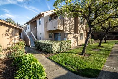 Mountain View, Sunnyvale Condo For Sale: 578 Ironwood Ter 8