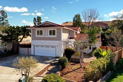 SAN JOSE CA Single Family Home For Sale: $1,325,000