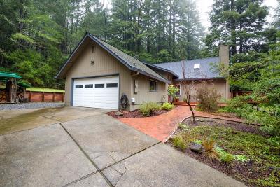 Santa Cruz County Single Family Home Contingent: 180 Valhalla Way