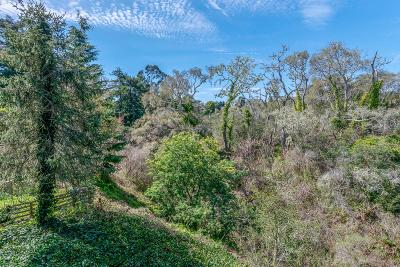 Santa Cruz County Single Family Home For Sale: 831 Seacliff Dr