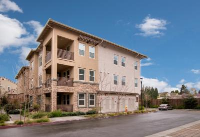 SUNNYVALE Condo For Sale: 1110 Karby Ter 102