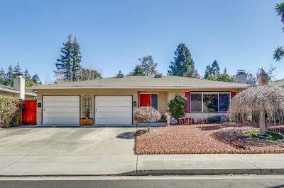 Mountain View Single Family Home For Sale: 285 Andsbury Ave