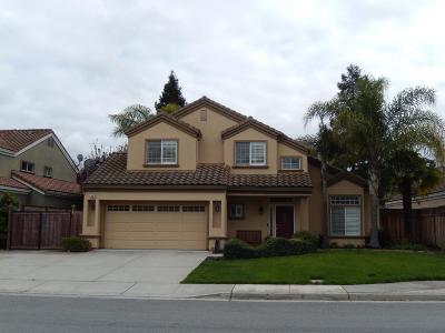 MORGAN HILL Single Family Home For Sale: 944 White Cloud Dr