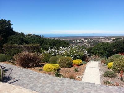 Monterey Single Family Home For Sale: 10721 El Camino Nuevo