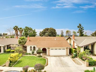 SAN JOSE Single Family Home For Sale: 1181 Sandstone Ln