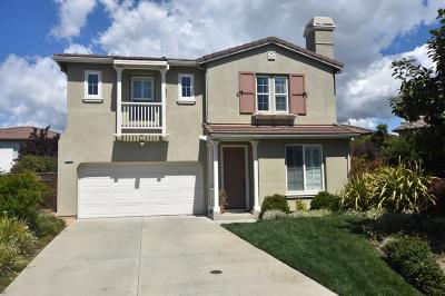 SAN JOSE Single Family Home For Sale: 1040 Banyan Ct