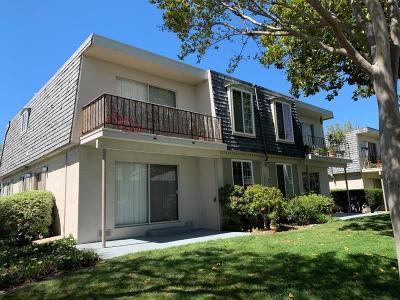 Sunnyvale Multi Family Home For Sale: 994 Mangrove Ave