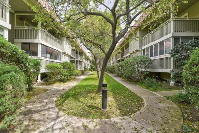 SANTA CLARA Condo For Sale: 215 Kiely Blvd B