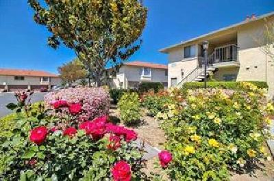 SAN JOSE Condo For Sale: 126 Kenbrook Cir