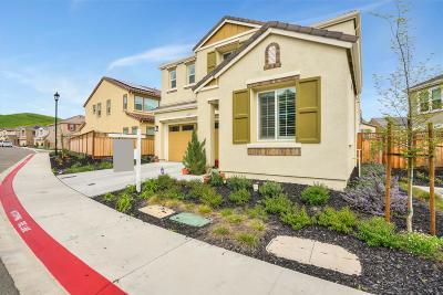 Dublin Single Family Home For Sale: 7132 Kylemore Circle