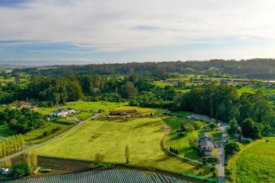 Watsonville Single Family Home For Sale: 260 Koenig Rd