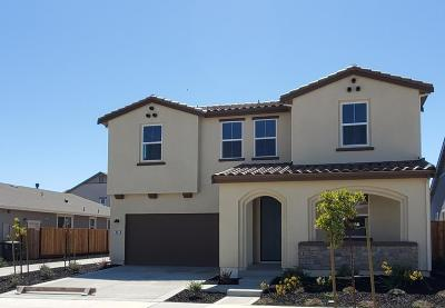 SAN JUAN BAUTISTA Single Family Home For Sale: 271 Copperleaf Ln