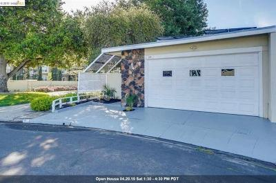 Milpitas Single Family Home For Sale: 54 Woodland Ct