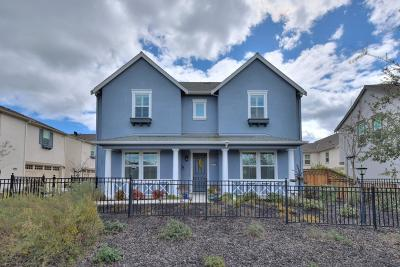 Dublin Single Family Home For Sale: 4452 Sunset View Dr