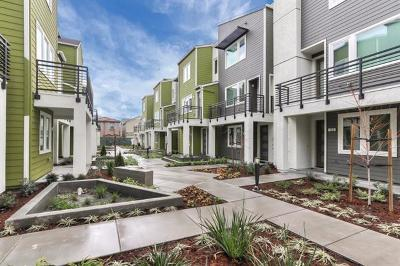 Milpitas Townhouse For Sale: 348 Hearst Dr A