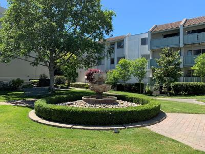 MOUNTAIN VIEW Condo Contingent: 400 Ortega Ave 301