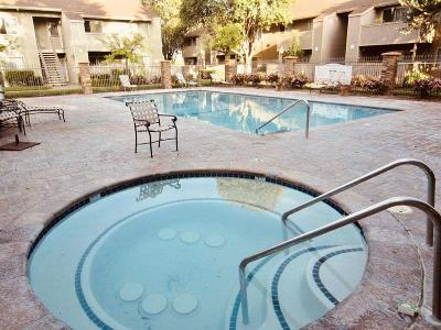 Fremont Condo For Sale: 3369 Foxtail Ter