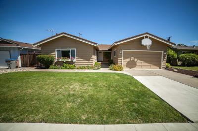 SAN JOSE Single Family Home For Sale: 930 Cera Dr