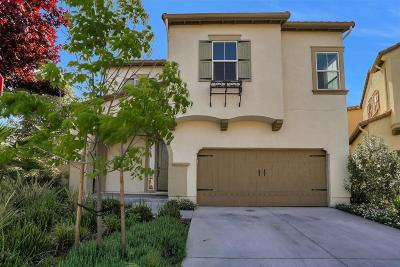 SUNNYVALE Single Family Home For Sale: 136 Avon Ter