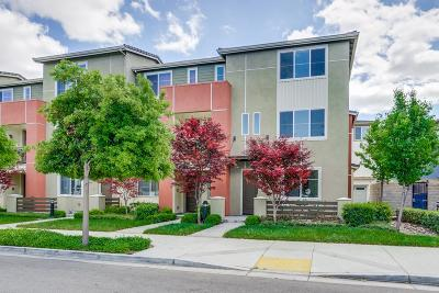 SUNNYVALE Townhouse For Sale: 1056 Duane Ct