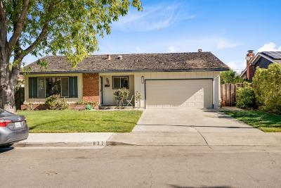 SUNNYVALE Single Family Home For Sale: 837 Gladiola Dr