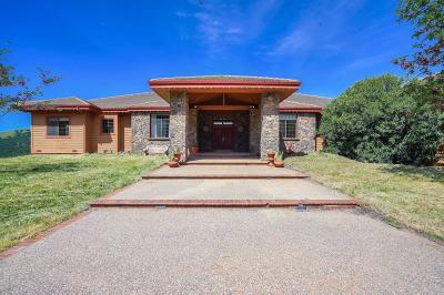 Contra Costa County Single Family Home For Sale: 420 Leon Ct