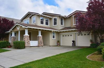 Napa County Single Family Home For Sale: 19 Haven Way