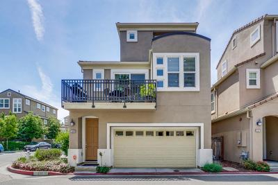 SANTA CLARA Single Family Home For Sale: 3560 Druffel Pl