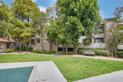 SUNNYVALE Condo For Sale: 880 E Fremont Ave 312