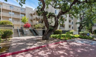 Mountain View, Sunnyvale Condo For Sale: 929 E El Camino Real 319d