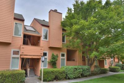 Santa Clara County Condo For Sale: 291 Sumba Ct