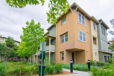 Santa Clara County Townhouse For Sale: 795 Modern Ice Dr