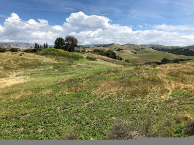 Milpitas Residential Lots & Land For Sale: 517 Vista Ridge Dr
