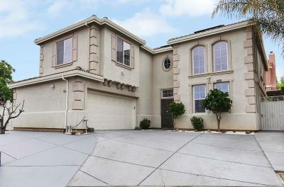 Santa Clara County Single Family Home For Sale: 3564 Chamberlain Dr