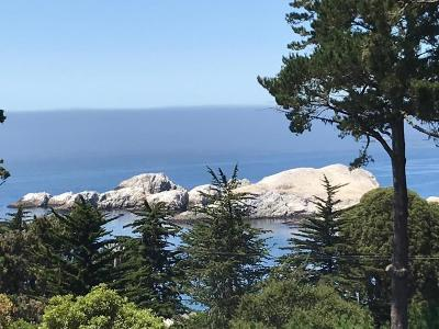 Monterey County Single Family Home For Sale: 246 Highway 1