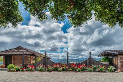Carmel Valley Single Family Home For Sale: 54 Camino De Travesia