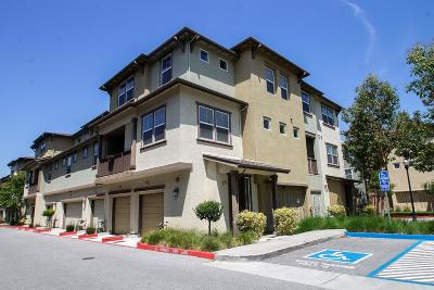 SAN JOSE Townhouse For Sale: 762 Modern Ice Dr