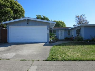 Hayward Single Family Home For Sale: 24841 Kay Ave