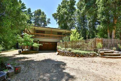 Boulder Creek Single Family Home For Sale: 482 Alder Rd