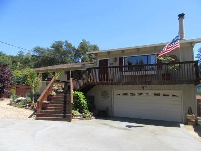 Ben Lomond Single Family Home For Sale: 8596 Glen Arbor Rd