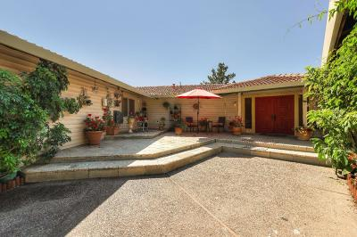 MORGAN HILL Single Family Home For Sale: 1580 Brewster Ln