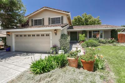 MORGAN HILL Single Family Home For Sale: 16780 Dry Creek Ct