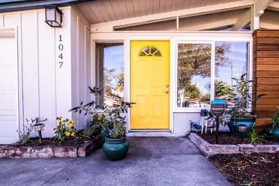 Sunnyvale Single Family Home For Sale: 1047 Blazingwood Dr
