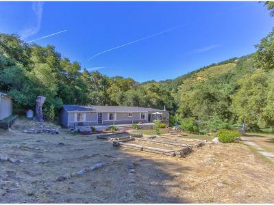 Carmel Valley Single Family Home For Sale: 40022 Tassajara Rd