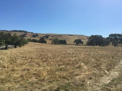 Gilroy Residential Lots & Land For Sale: 4000 Prunedale Ave