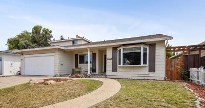 Single Family Home For Sale: 736 Faraone Dr