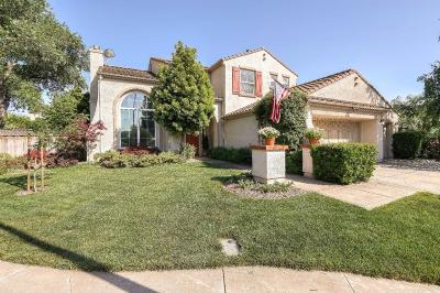 MORGAN HILL Single Family Home For Sale: 19129 Eagle View Dr