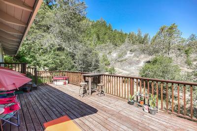 Boulder Creek Single Family Home For Sale: 340 Boulder Brook Dr